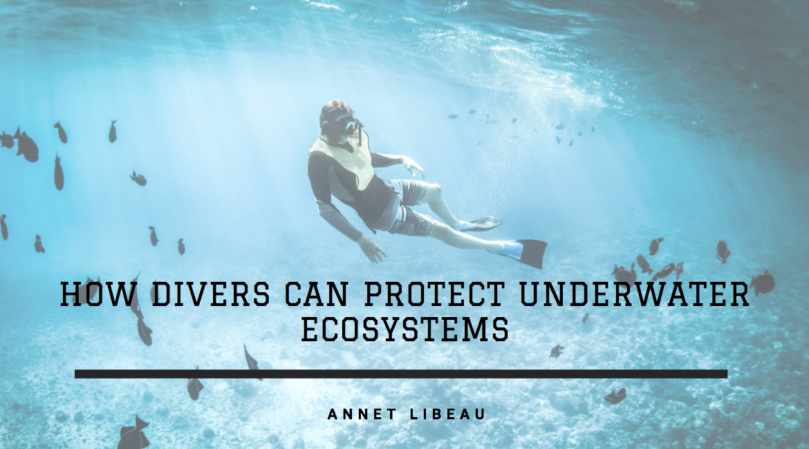 Avid Diver Annet Libeau Discusses How Divers Can Protect Underwater Ecosystems